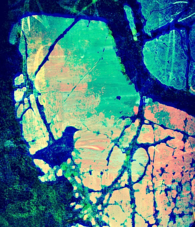 crow-forest-magic-blue-_edited-2
